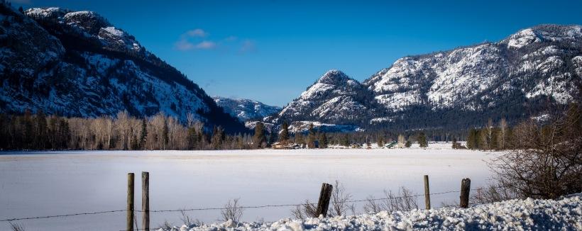 winterfarm